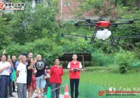 BaNan District: UAVs Free Spray Pesticides for Poor and Disabled Farmers