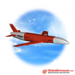 Wofei unmanned aircraft target drone (B3A)