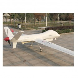 Sky-100   Long endurance drone combines reconnaissance and attack